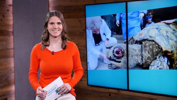 Munde TV Sendung vom 28. Jänner 2020 zum Nachsehen