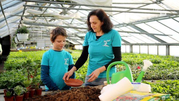 Tirol blüht auf - wie Kinder im Garten helfen können