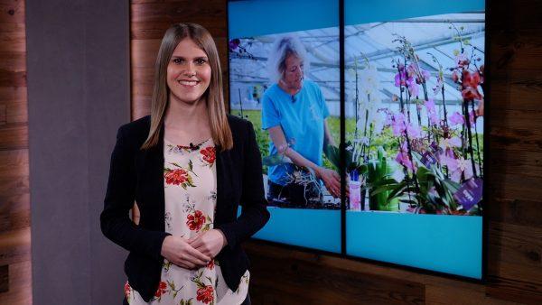 Munde TV Sendung vom 13. April 2021 zum Nachsehen